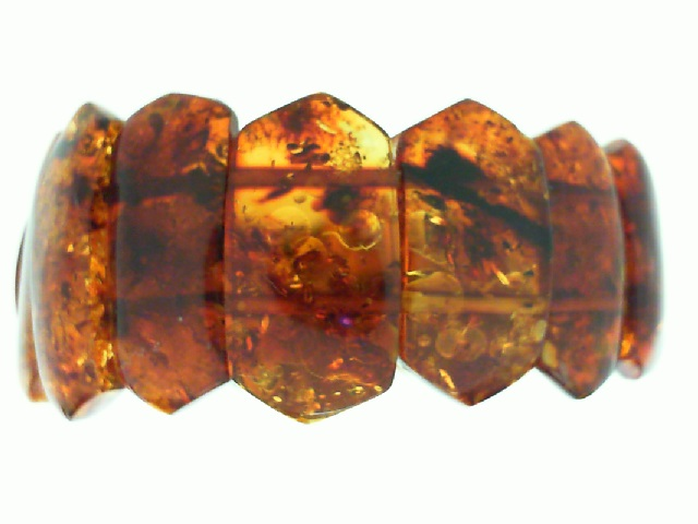 For the Curious Mind: Dinosaur Feathers Found in Amber
